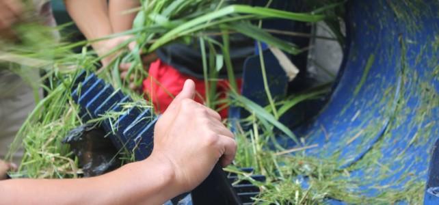 Jual Mesin Pencacah Rumput